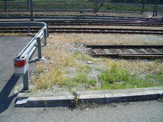 Grün entlang der Bahngleise